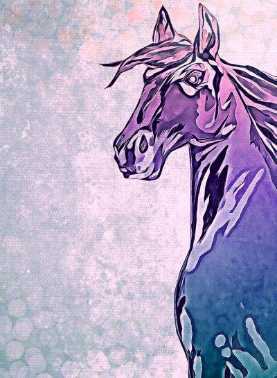 Mixed Media Canvas Print featuring a Horse